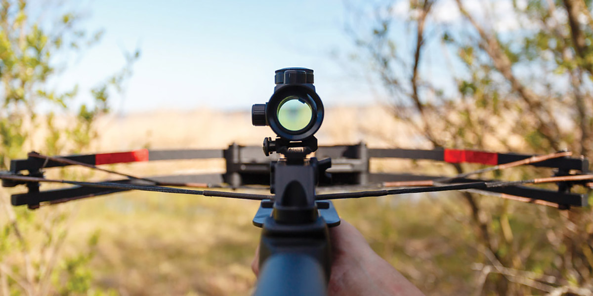 Aiming down a crossbow scope into a field
